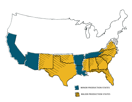 Peanut-Production-Map-large